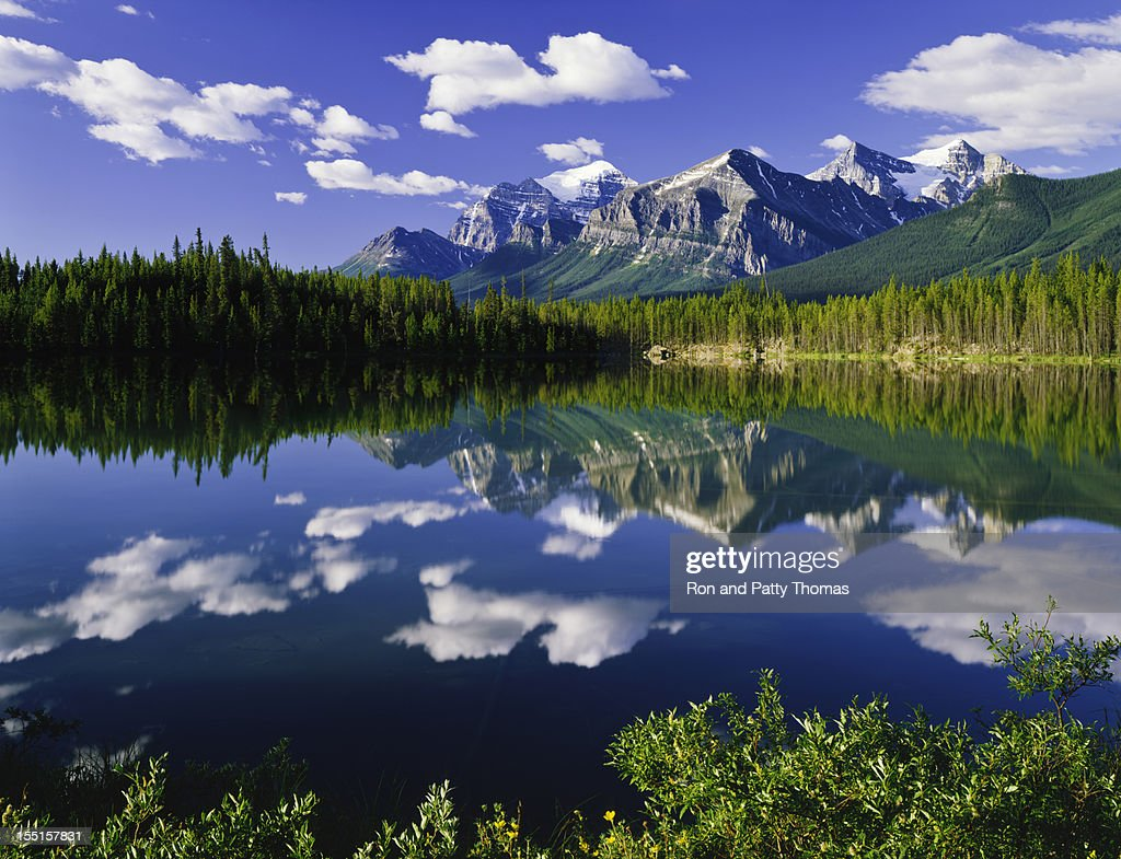 Canadian Rockies In Banff NP : Stock Photo