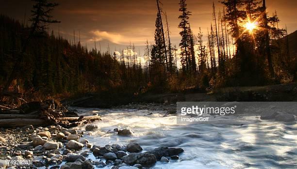 Canadian Rockies Wilderness Scene