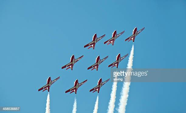 canadian snow birds in flight  from below - canadian snowbird stock pictures, royalty-free photos & images