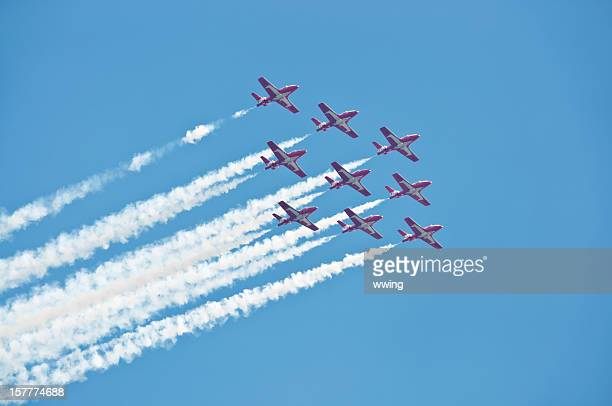 canadian snow birds in flight - canadian snowbird stock pictures, royalty-free photos & images