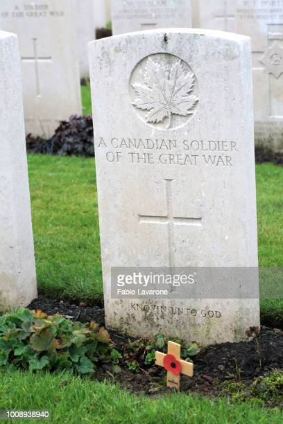 Canadian Soldier of the Great War.