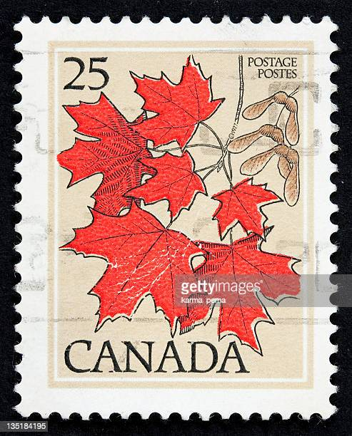 a canadian stamp with red maple leaves - traditionally canadian stock pictures, royalty-free photos & images
