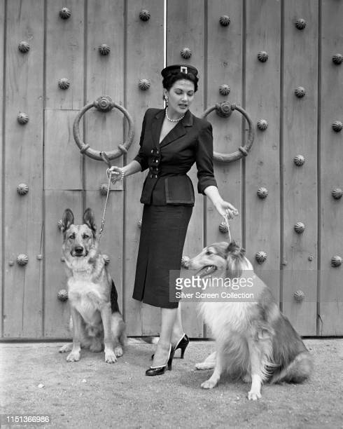 CanadianAmerican actress Yvonne De Carlo with two dogs circa 1955