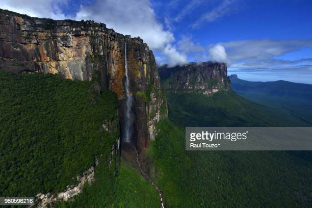 angel fall surges from auyan-tepui. - angel falls stock photos and pictures