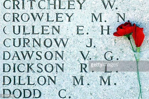 A red carnation is placed on a memorial during dawn service at Lone Pine in commemoration of the Gallipoli War on Gallipoli peninsula 25 April 2006...