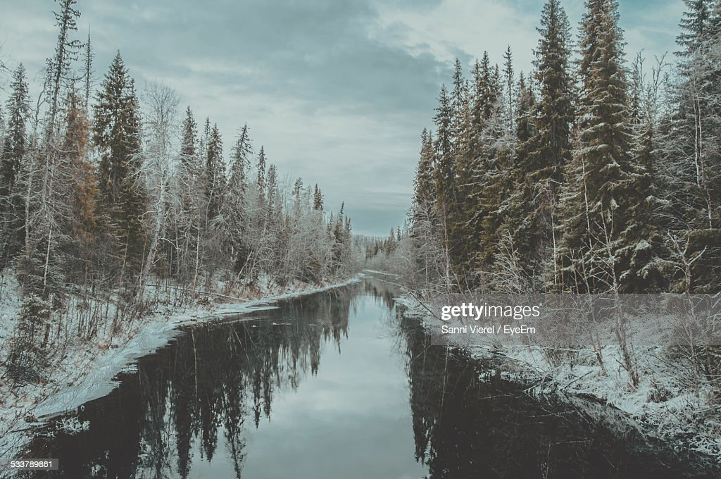 Canal Amidst Trees Against Sky During Snow : Foto stock