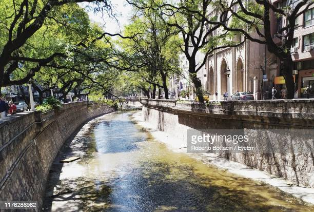 canal amidst trees in city - cordoba argentina stock pictures, royalty-free photos & images