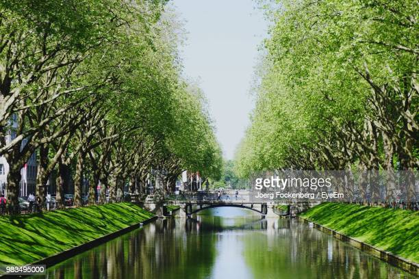 canal amidst trees in park against sky in city - デュッセルドルフ ストックフォトと画像
