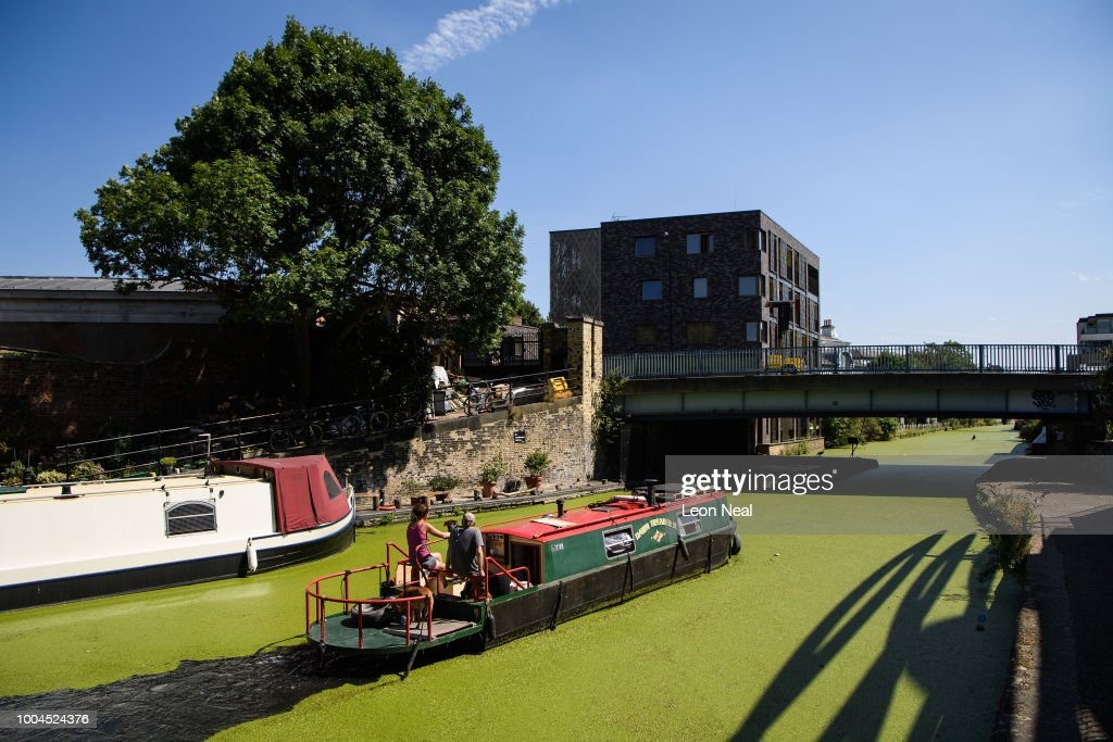 A canal barge cuts through the green coating on Regent's