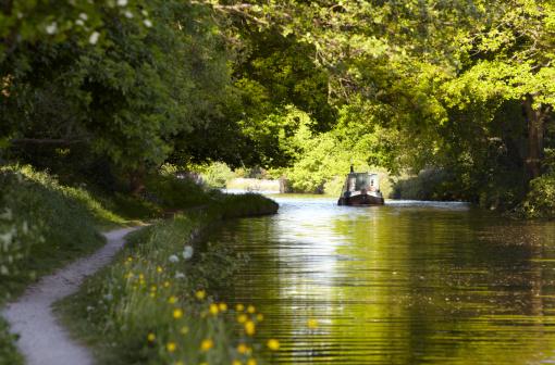 Canal barge moves through green summer dappled shade 173841521