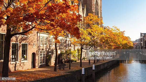 canal by trees in building - dordrecht stock pictures, royalty-free photos & images
