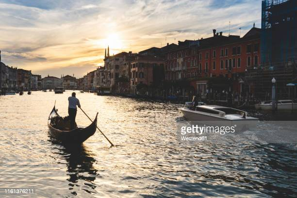 canal grande at sunset, venice, italy - gondola traditional boat stock pictures, royalty-free photos & images