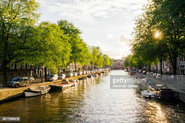 Canal in Amsterdam during sunset, Holland, Netherlands