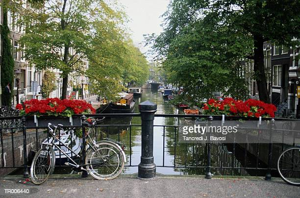 canal in amsterdam - bavosi stock pictures, royalty-free photos & images