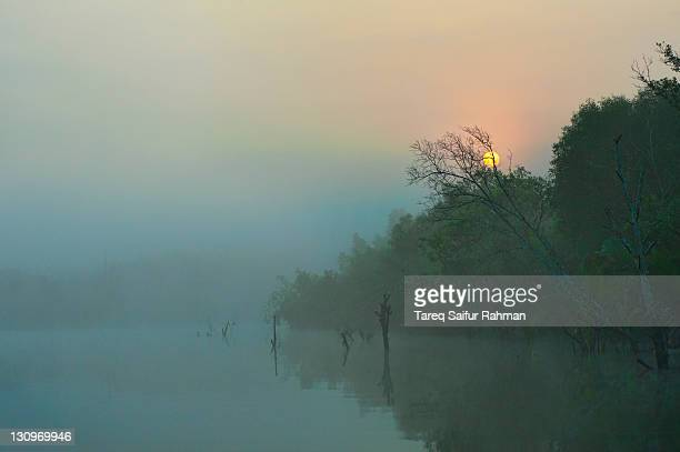 canals of sundarban - khulna stock photos and pictures
