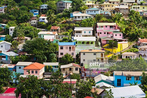 canaries, saint lucia - st. lucia stock pictures, royalty-free photos & images