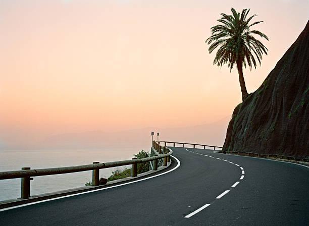 Canary Islands, La Gomera, silhouette of palm tree on coastal highway at sunset