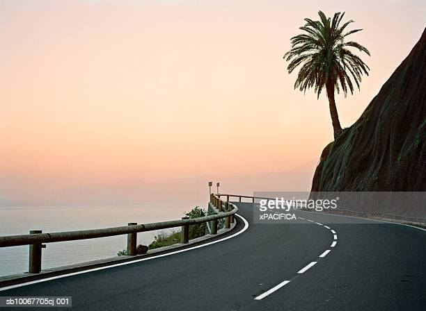 Canary Islands, La Gomera, silhouette of palm tree on coastal highway at sunset