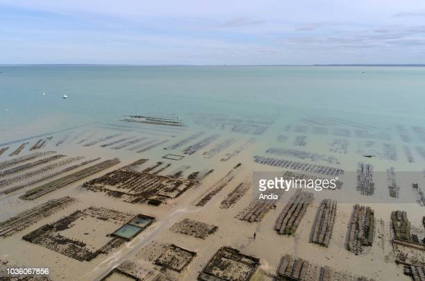 Cancale : Aerial view of the coastline and the oyster beds in the port.