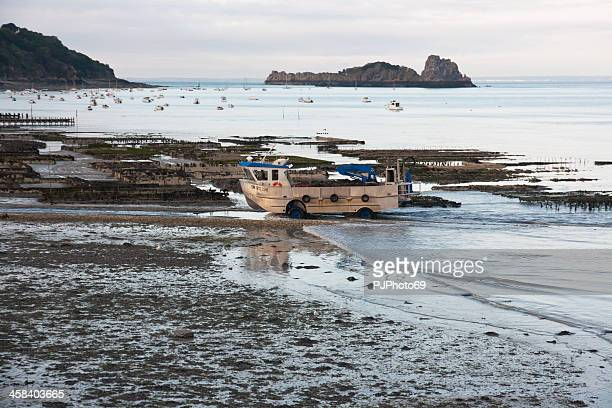 cancale - oysters and mussels farm's - pjphoto69 stock pictures, royalty-free photos & images