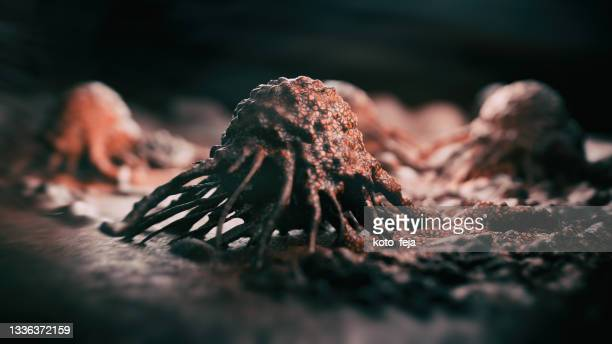 cancer cells vis - pancreatic cancer stock pictures, royalty-free photos & images
