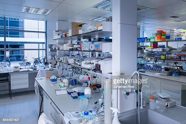 cancer research laboratory - place of research stock pictures, royalty-free photos & images
