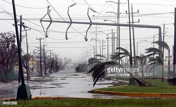 An electricity pylon is hooked to cables 22 October 2005 in Cancun during the passage of Hurricane Wilma Three people died and more than 1000 homes...