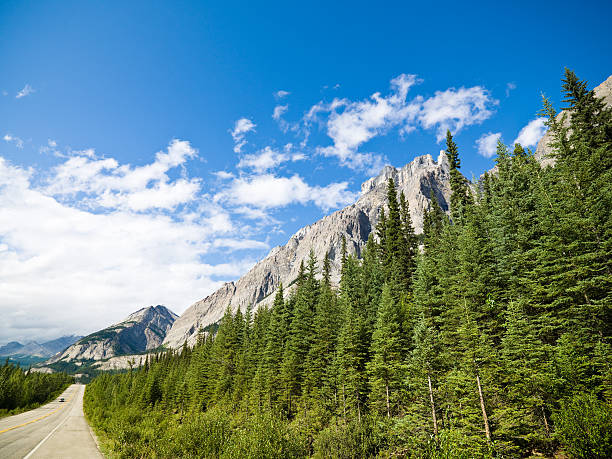 Candian Rocky Mountains With Lonely Road Wall Art