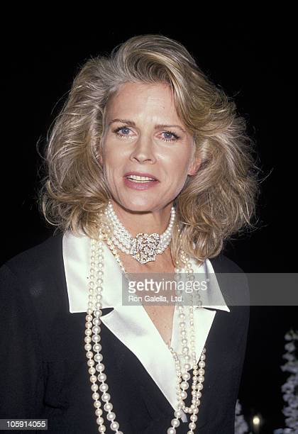 Candice Bergen during Revlon's Unforgettable Women of 1990 at Metropolitan Museum of Art in New York City New York United States