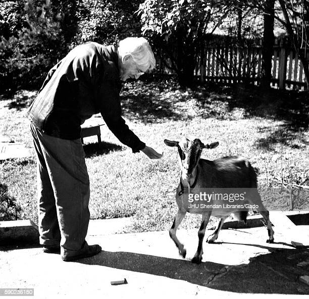 Candid portrait of American philosopher psychologist and educational reformer John Dewey standing outside on a path feeding a goat 1946