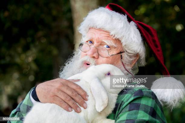 Candid Santa Claus Farmer cuddling a tender white rabbit.