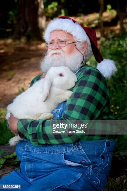 Candid Santa Claus Farmer embracing a tender white rabbit.