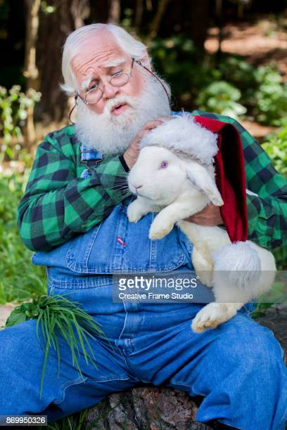 Candid Santa Claus putting his hat to a tender white rabbit