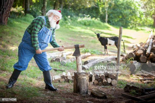 Candid Santa Claus wood cutting on a meadow with a goat on the background.