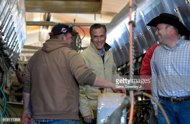 Candidate for senate Mitt Romney tours Gibson's Green Acres Dairy on February 16 2018 in Ogden Utah Mr Romney is running for a US Senate seat from...