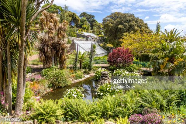 candie gardens, st peter port, guernsey, channel islands uk - isola di guernsey foto e immagini stock
