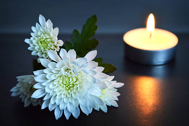 Free death flower images pictures and royalty free stock photos candle and white flowers mightylinksfo