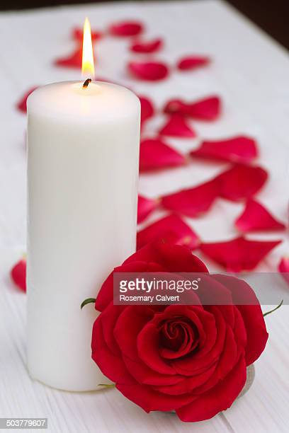 Candle, red rose & table covered with rose petals