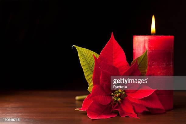 Kerze mit Weihnachtsstern