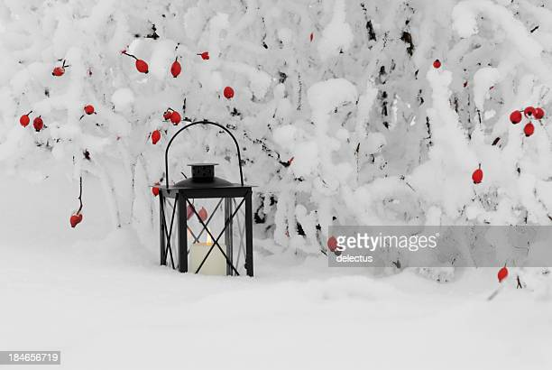 Candlelight in the snow