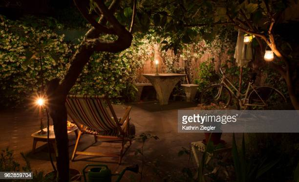 Candlelit backyard with star jasmine hedge in full bloom