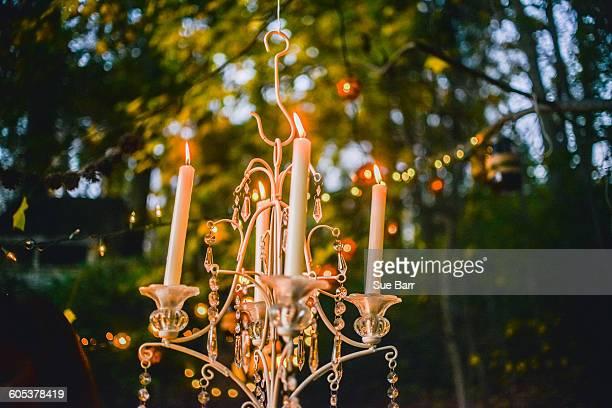 Candlelit candelabra hanging in forest at dusk