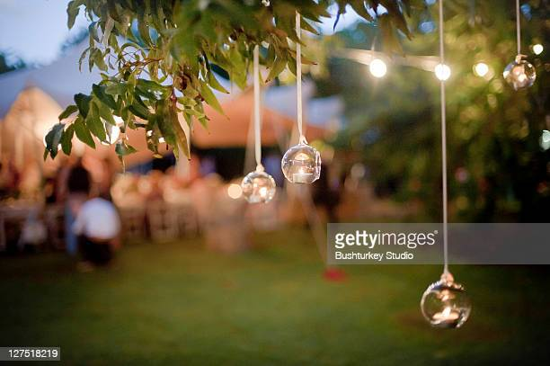 Candles hanging from tree