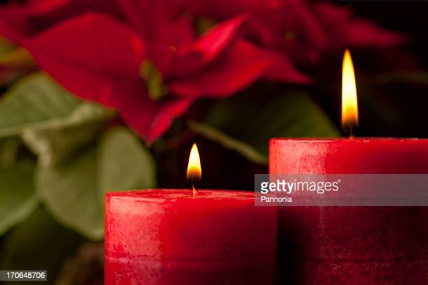 Candles with Poinsettia in Background