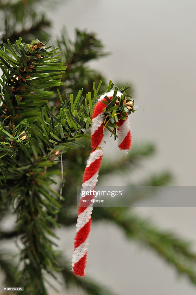 Candy cane Christmas tree decoration : Stock Photo