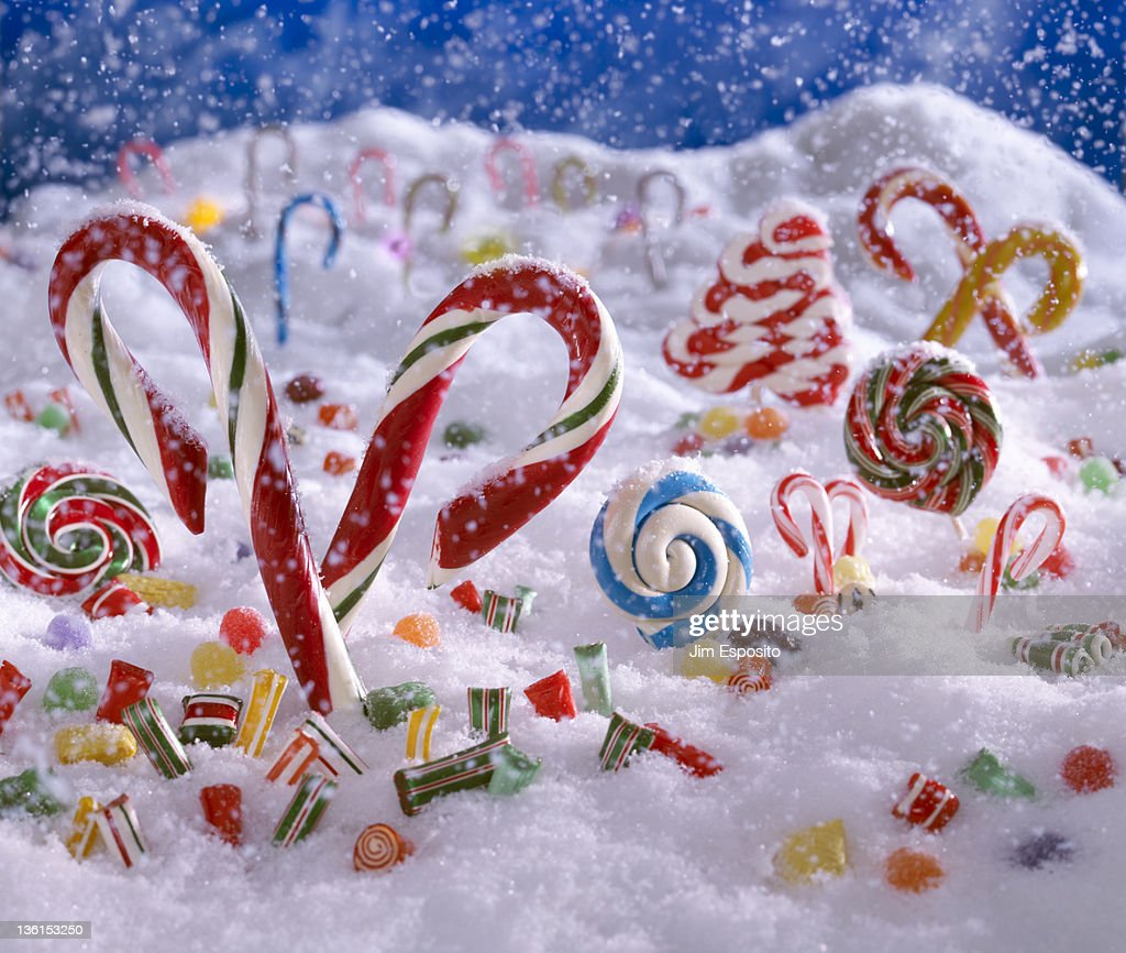 Candy Cane Forest High Res Stock Photo Getty Images