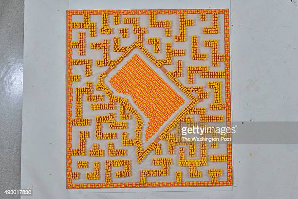 A candy corn maze with the map shape of Washington DC was constructed by Weiyi Cai on Friday October 9 in Washington DC