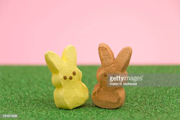 candy marshmallow easter bunny candy sitting in grass, close-up - easter candy stock pictures, royalty-free photos & images