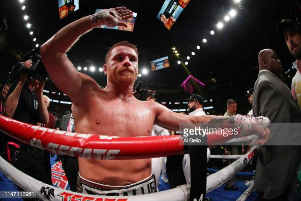 Canelo Alvarez celebrates after his unanimous decision win over Daniel Jacobs in their middleweight unification fightat T-Mobile Arena on May 04,...