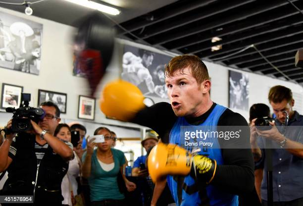 Canelo Alvarez former WBC WBA Super Welterweight World Champion trains during an open workout at the House of Boxing Gym July 1 2014 in San Diego...